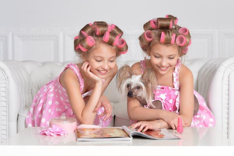 Två kopplar samman med deras hund royaltyfria foton