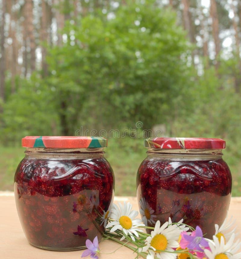 Två krus av driftstopp som samlas från lösa jordgubbar royaltyfri bild