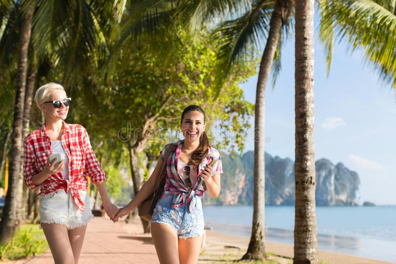 Två kvinnahållhänder som går i tropiska palmträd, parkerar på stranden, härligt ungt kvinnligt par på sommarsemester royaltyfria bilder
