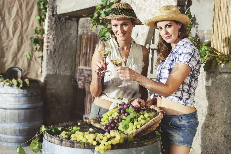 Två kvinnajubel med ett exponeringsglas av vitt vin arkivfoto