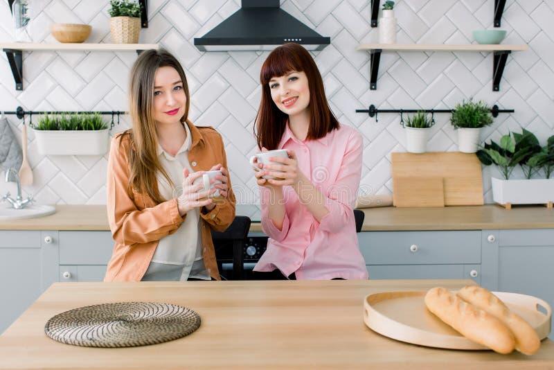 Två kvinnavänner frukosterar, i köket och att skratta gyckeln för ha som, samtal och hemma sitter på den äta middag tabellen royaltyfri fotografi