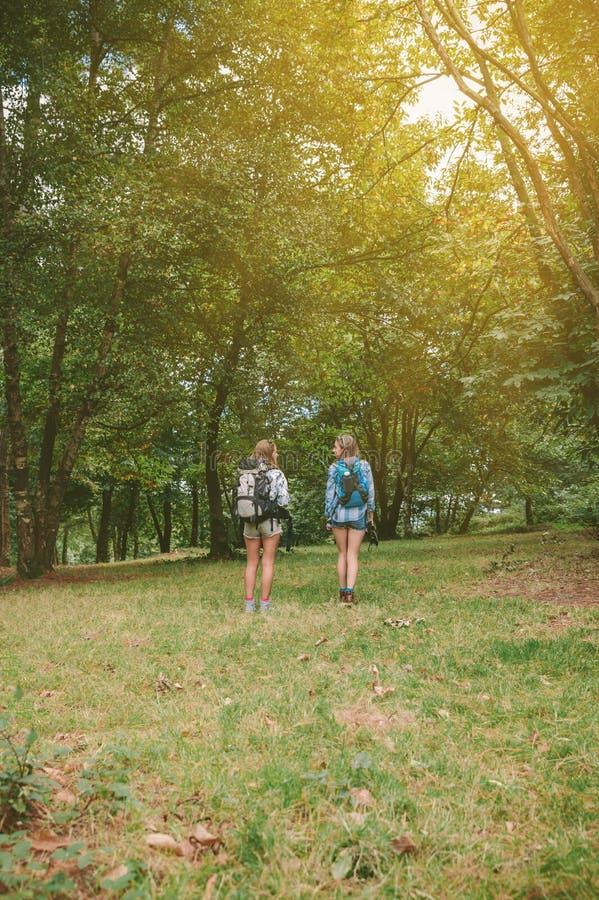 Två kvinnavänner med ryggsäckar som står i skog fotografering för bildbyråer