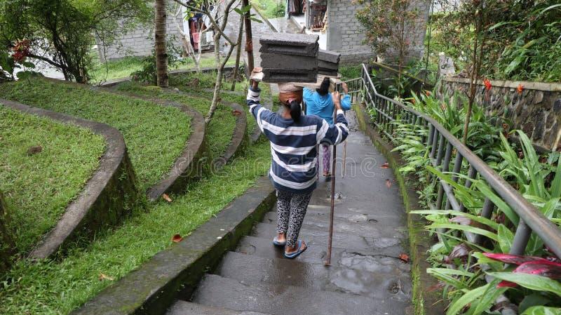 Två kvinnliga bärande tegelstenar på där huvudet som går bottenvåning som av naturen omges royaltyfri bild
