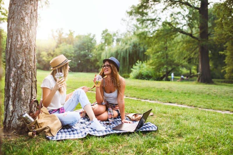 Två kvinnliga vänner som sitter på gräset, talar och använder bärbara datorn arkivfoto