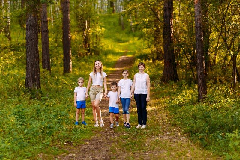 Två kvinnor och tre barn går till och med skogen som rymmer händer oavkortad tillväxtsommar arkivbilder