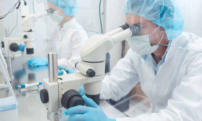 Två labbtekniker eller forskare som arbetar i laboratorium arkivfoto