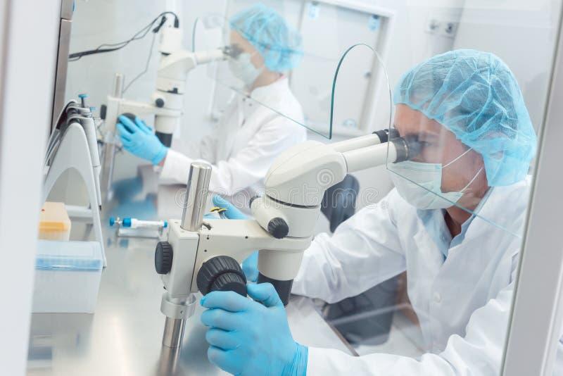Två labbtekniker eller forskare som arbetar i laboratorium arkivbild
