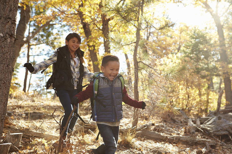 Två latinamerikanska barn har rolig spring i en skog royaltyfri foto
