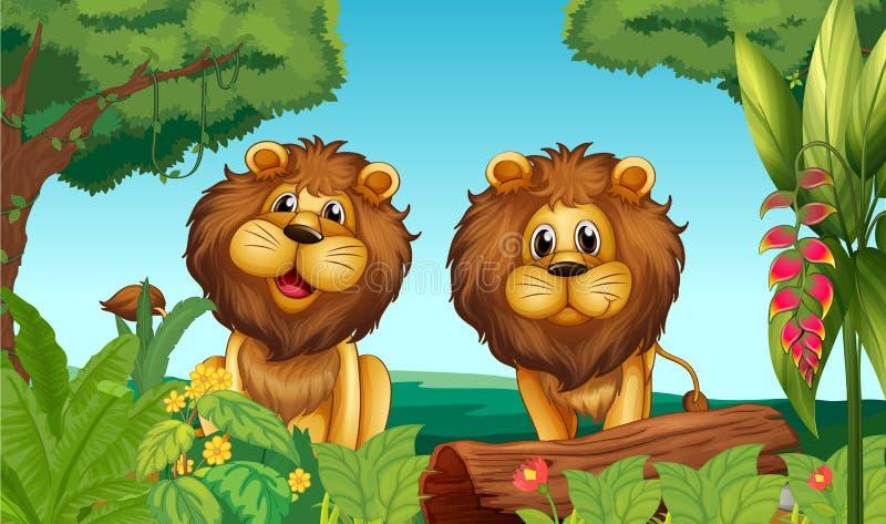 Två lejon i skogen royaltyfri illustrationer