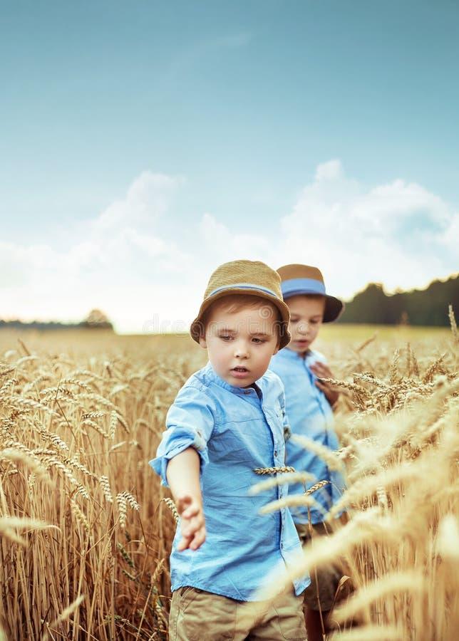Två lilla bröder i vetefältet royaltyfria bilder