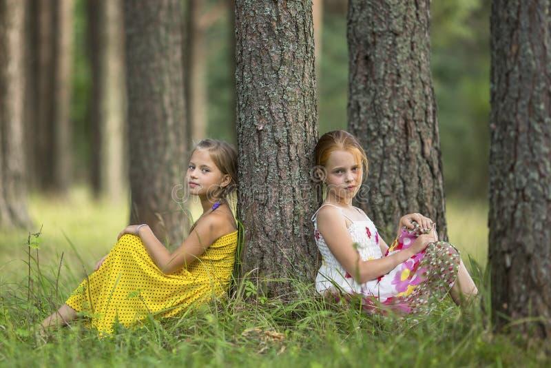 Två lilla gulliga flickor som sitter nära trädet i en pinjeskogsommar fotografering för bildbyråer