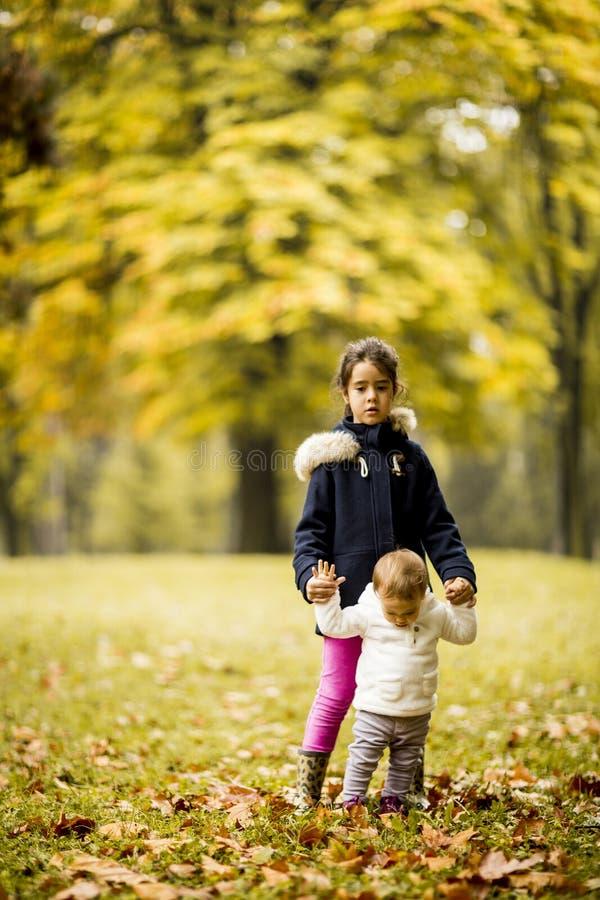 Två lilla systrar i hösten parkerar royaltyfria foton