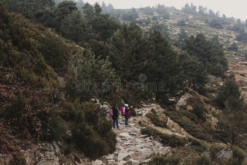 två lyckade fotvandrarekvinnavänner tycker om sikten på bergmaximum Lyckliga fotvandrare i natur arkivbilder