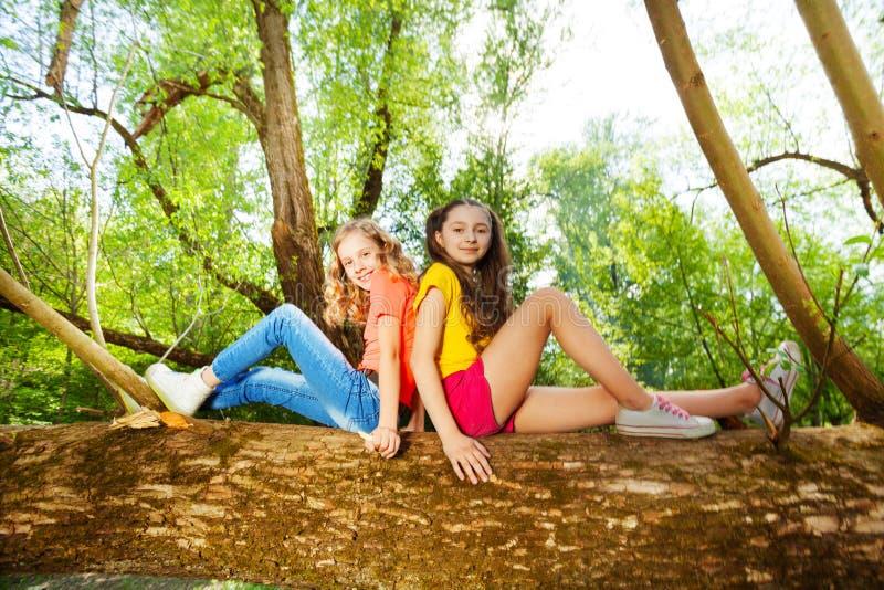 Två lyckliga flickavänner som sitter på stupat träd royaltyfria bilder