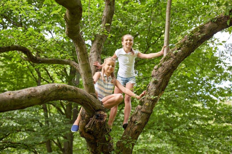 Två lyckliga flickor som upp klättrar trädet i sommar, parkerar fotografering för bildbyråer