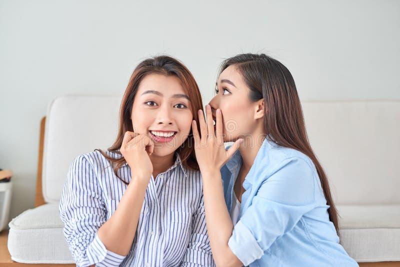 Två lyckliga kvinnor med tjuvlyssnar viskning en hemlig gåta i studion på vardagsrum arkivfoton