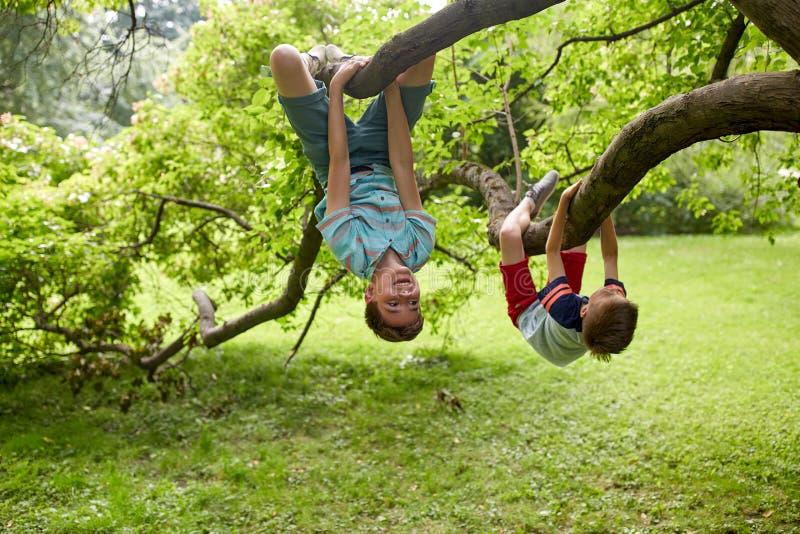 Två lyckliga pojkar som hänger på träd i sommar, parkerar royaltyfria foton