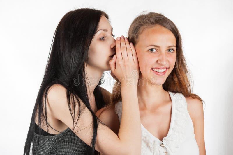 Två lyckliga unga flickvänner viskar samtal, samhälleskvaller, ryktet, rykte royaltyfri bild