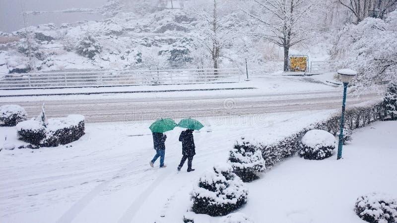 Två män går utomhus-, Japan royaltyfri bild