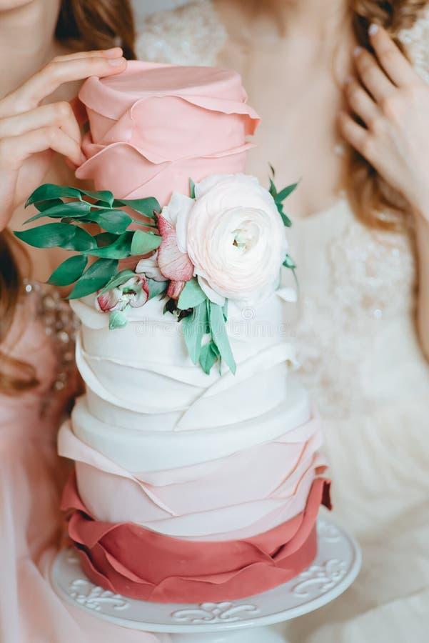 Två mjuka brudflickor modellerar skyler in den hållande friaren för bröllopsklänningen royaltyfri bild