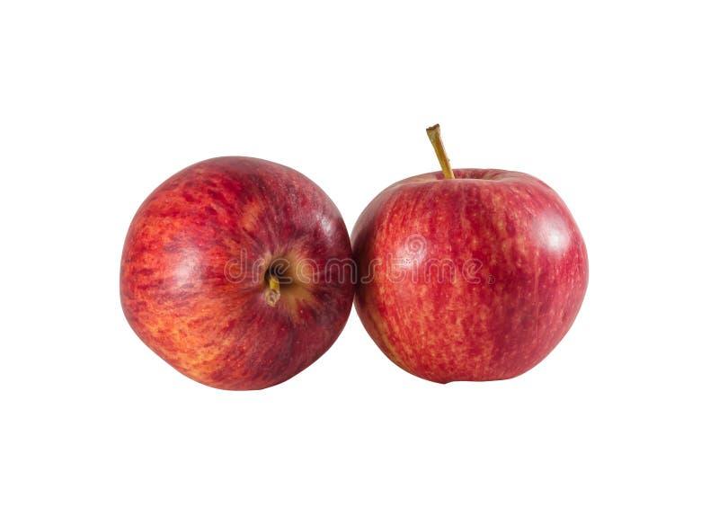 Två mogna nya röda äpplen som isoleras på vit bakgrund royaltyfria foton