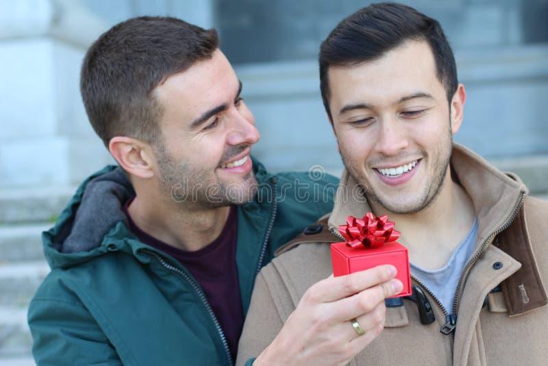 Två naturligt förälskade män royaltyfria bilder
