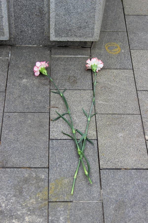 Download Två Nejlikablommor På Stengolv Fotografering för Bildbyråer - Bild av marmor, golv: 76702951