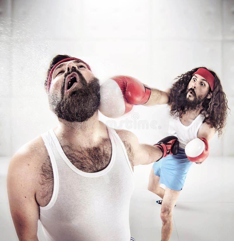 Två nerdy grabbar som boxas på cirkeln royaltyfri fotografi