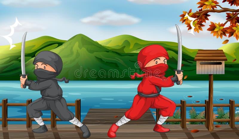 Två ninjas royaltyfri illustrationer