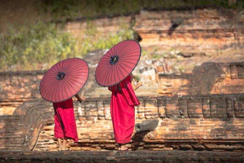 Två noviser fördelade ett rött paraply royaltyfri foto