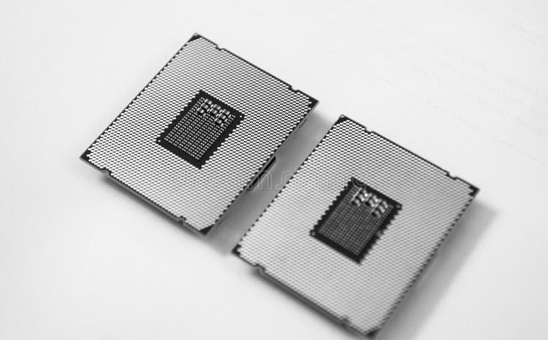 Två nya kraftiga svartvita arbetsstationsCPU-processorer arkivbild
