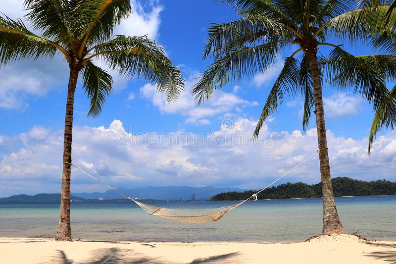 Två palmträd med en hängmatta på stranden - Gaya Island Malaysia Asia royaltyfri foto