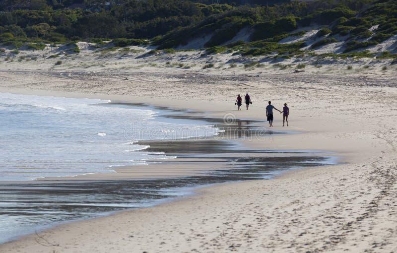Två par går på en strand. Fingal fjärd. Australi royaltyfri fotografi