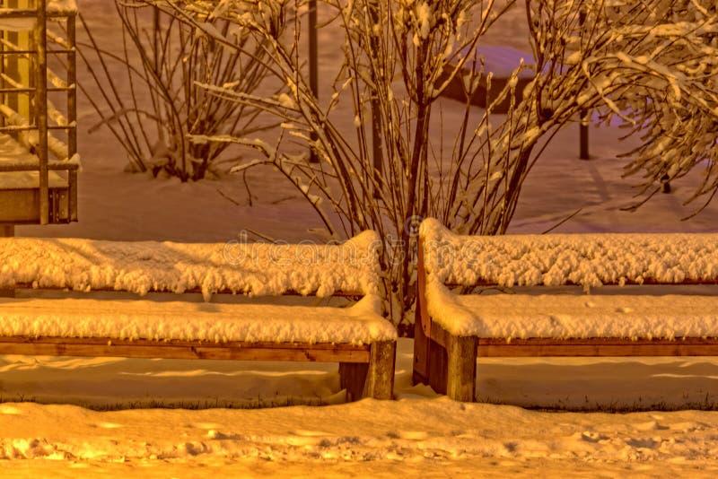 Två parkerar bänkar som täckas fullständigt med snö royaltyfri foto