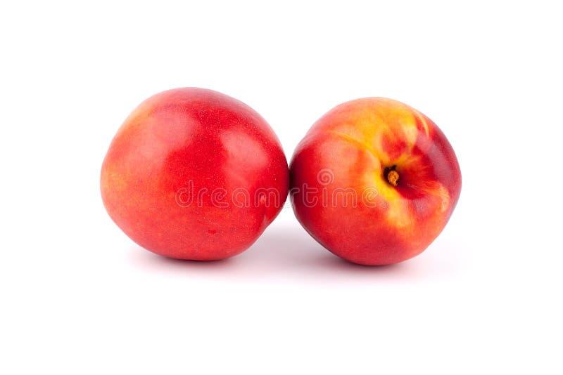 Två persikor på en vit bakgrund som tätt isoleras upp royaltyfri bild