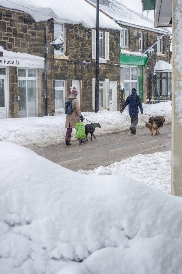 Två personer går hundkapplöpning i djup snö täckt by royaltyfria bilder