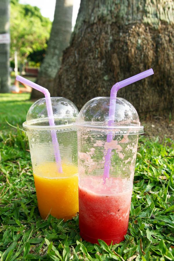 Två plast- exponeringsglas med mangofruktsaft och vattenmelonfruktsaft på ett gräs royaltyfri fotografi