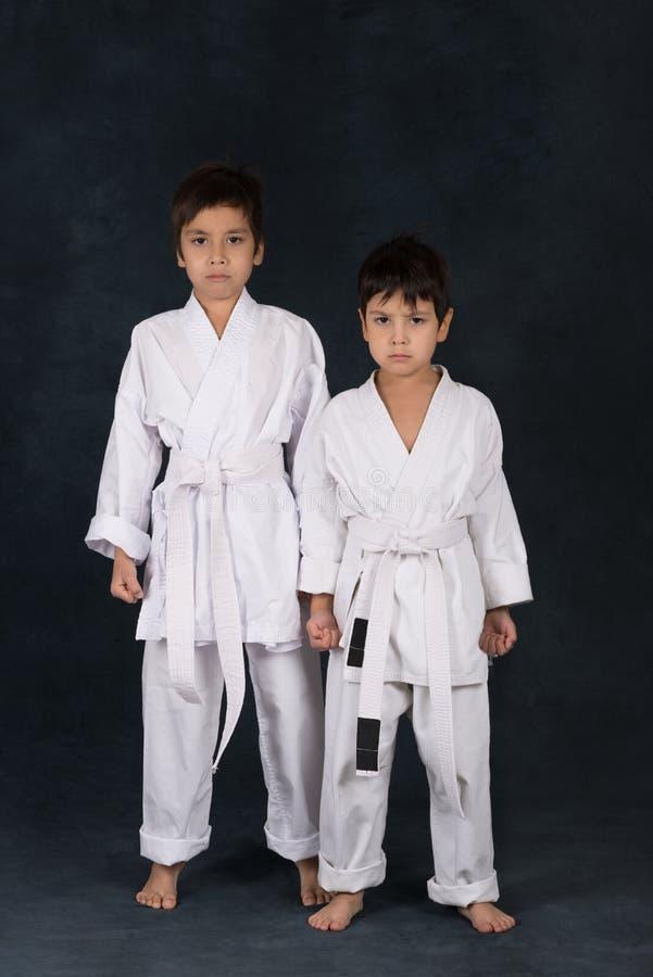Två pojkar av karatet i en vit kimono royaltyfri foto