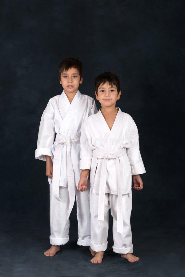 Två pojkar av karatet i en vit kimono arkivfoto