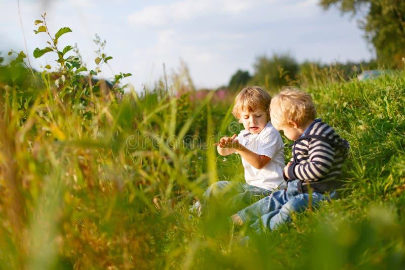 Två pojkar för liten broder som spelar nära skogsjön på sommarafton Gulligt syskon som tillsammans spelar royaltyfri foto