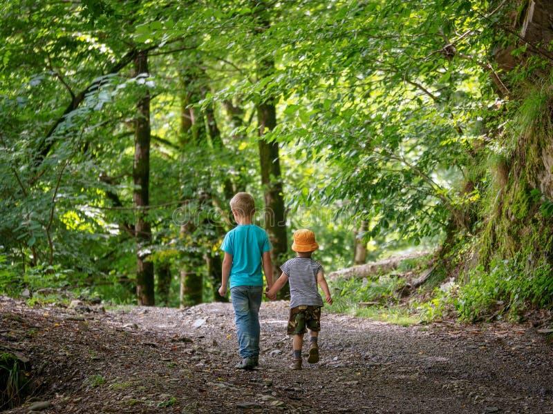 Två pojkar går vidare banan i de gröna skog- och hållhänderna royaltyfri foto