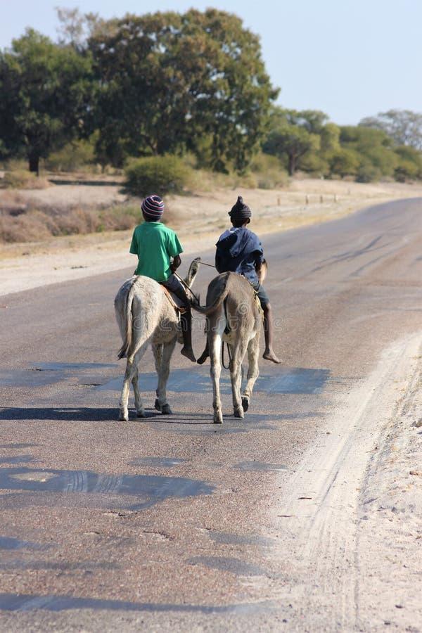 Två pojkar som rider åsnor i Afrika arkivfoto