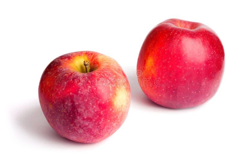 Två röda mogna saftiga äpplen på vit isolerad bakgrund royaltyfria foton