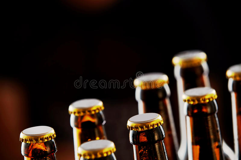 Två rader av oöppnade ölflaskor royaltyfri foto