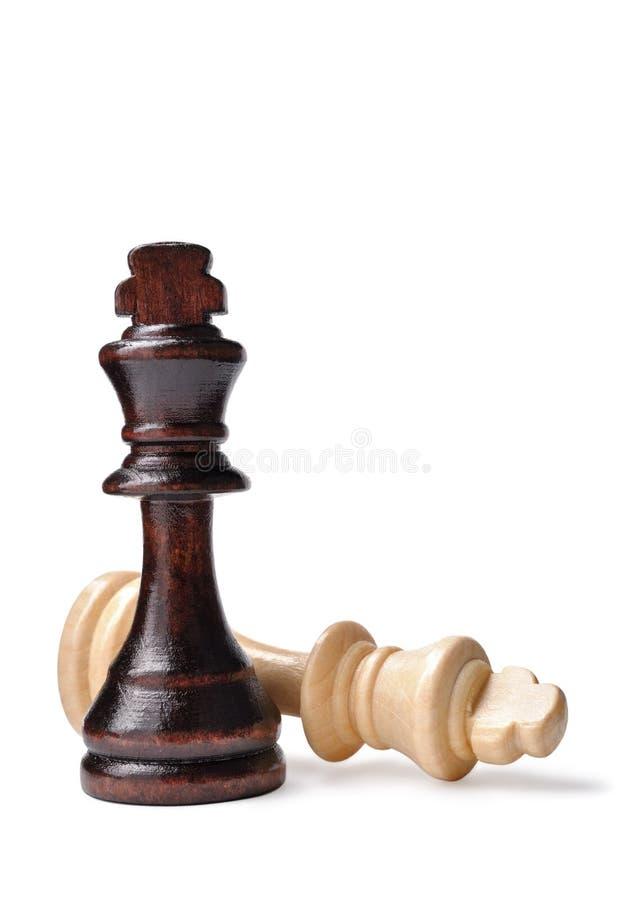 Två schackstycken, ett mörker och ett ljus royaltyfri bild