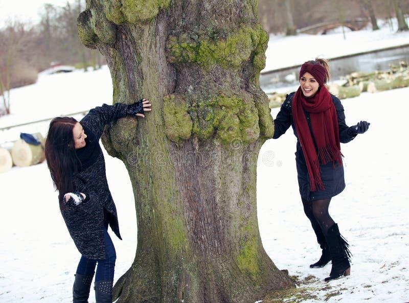 Två skämtsamma vänner som utomhus tycker om vintern arkivfoto