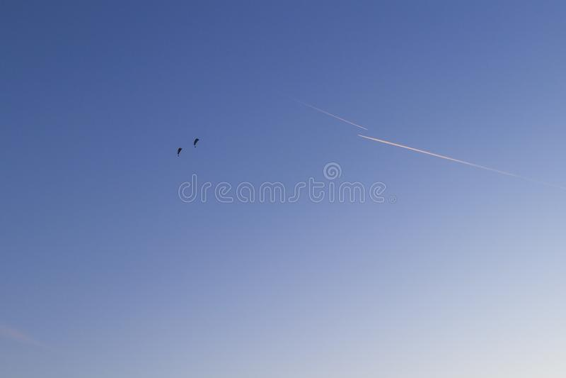 Två skydivers och två spår från nivån mot den blåa himlen royaltyfri fotografi