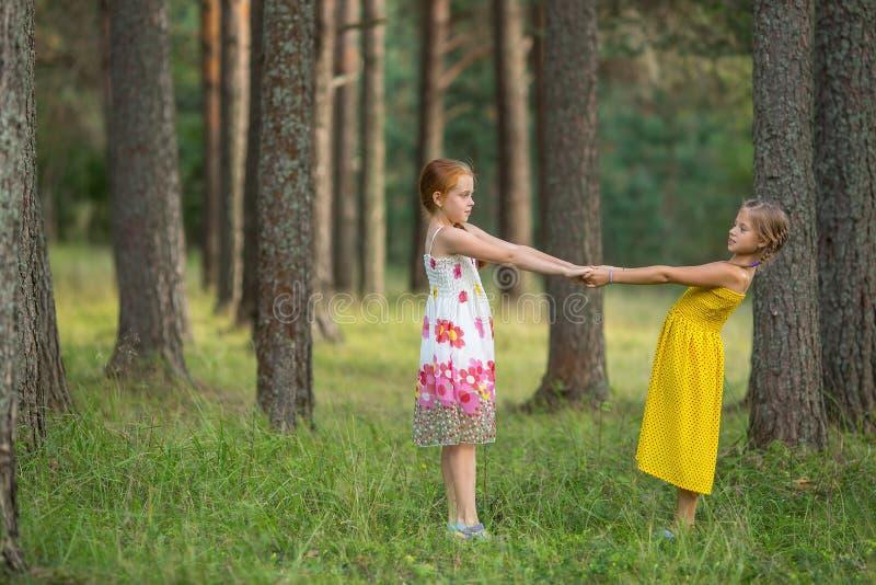 Två små flickor för de hållande händerna i pinjeskogen spelar royaltyfria foton