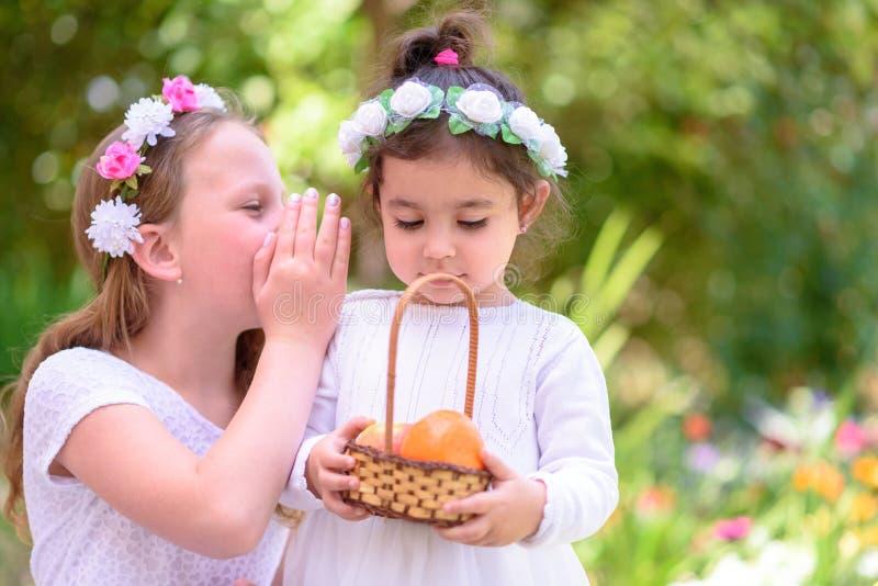 Två små flickor i den vita klänningen rymmer en korg med ny frukt i en sommarträdgård royaltyfria bilder