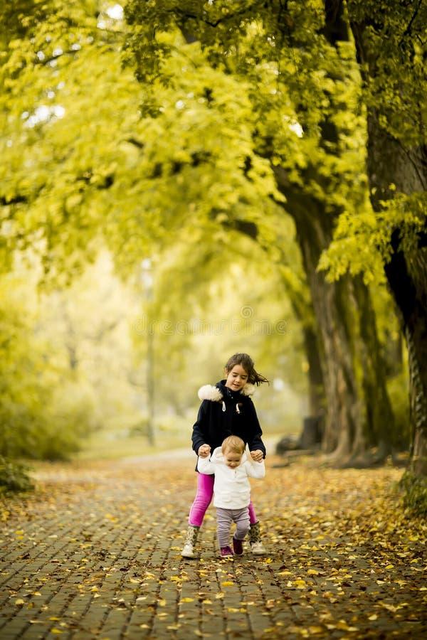 Två små flickor på hösten parkerar arkivfoton